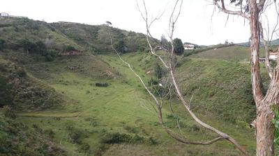 Lotes En San Vicente Baratos