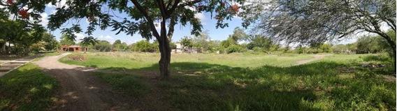 Terreno En Venta Villa Cuauhtémoc