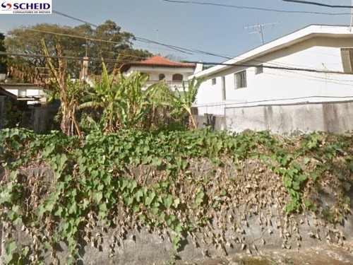 Imagem 1 de 2 de Terreno  Residencial  - Mr60063