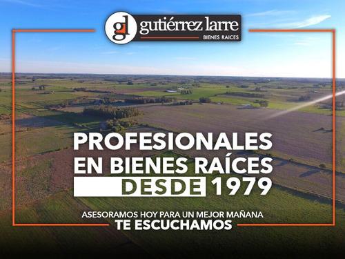 Campo Agrícola Ganadero Con Muchos Recursos Hídricos, 204 Ha