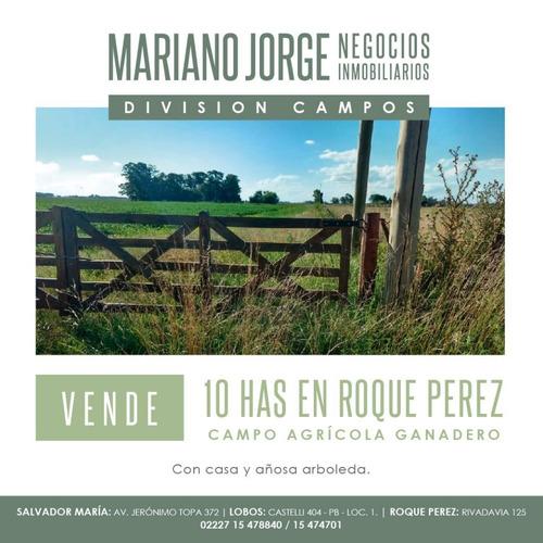 Imagen 1 de 5 de Campo 10 Has Agricola - Roque Pérez