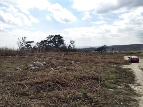 Imagen 1 de 3 de Se Vende 1,000 M2 De Terreno En Berriozábal.