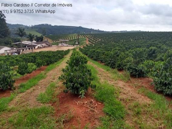 Fazenda - Fa00037 - 34822304