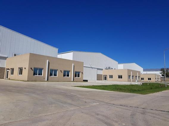 Nave Industrial Premium A Estrenar En El Parque Industrial Berazategui (pibera)