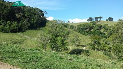 Fazenda A Venda No Bairro Zona Rural Em Carmo De Minas - Mg. - 273