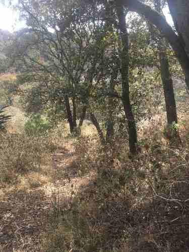 Terreno En Venta Villa Del Carbón