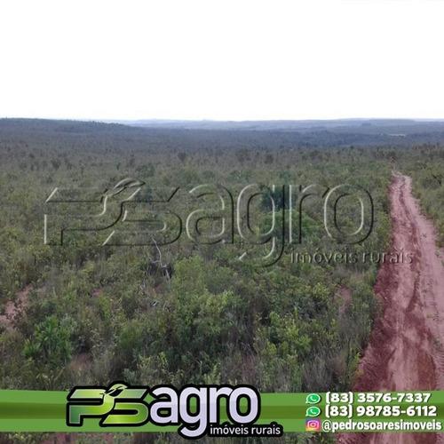 Fazenda À Venda, 400 Alqueires Por R$ 4.800.000 - Zona Rural - Ponte Alta Do Tocantins/to - Fa0258