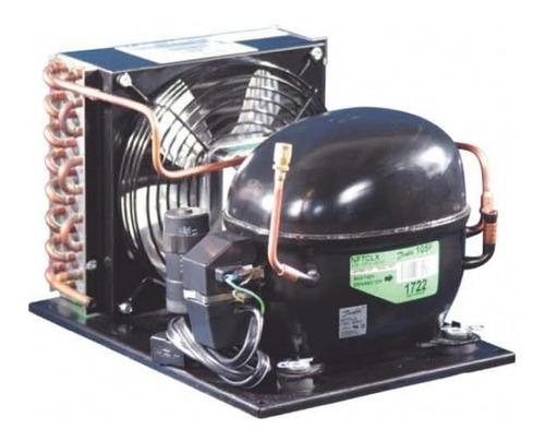 Imagen 1 de 1 de Unidad Condensacion Danfoss 1/2hp+ R134 110v/1ph/60hz Sin