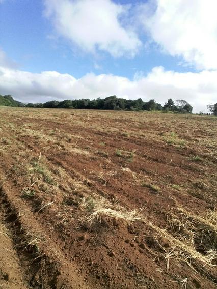 B01 Terrenos Em Ibiuna Otima Localização 500m² P/ Construir