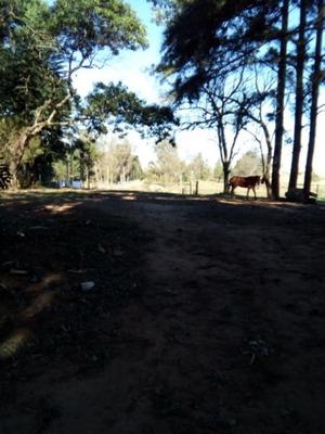 Terreno Em Barnabé - Vr23975