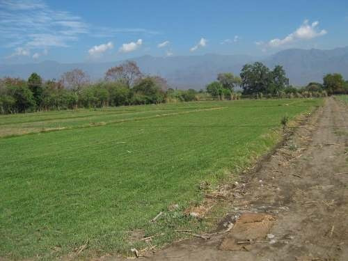 Terreno Campestre En Oacalco, Yautepec, Morelos Crb-164-tc