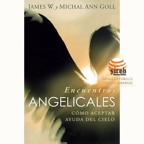 Imagen 1 de 1 de Encuentros Angelicales. Como Aceptar Ayuda Del Cielo
