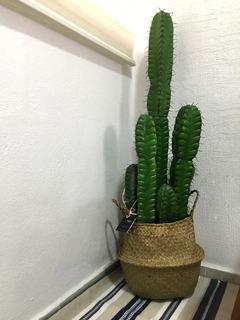 Canasta De Algas Marinas Natural Tejida Maceta Con Cactus