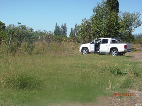 Lote Terreno Finca En Rama Caida Valle Grande San Rafael Mza