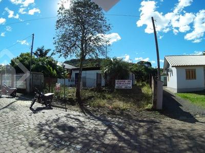 Terreno - Centro - Ref: 221499 - V-221499