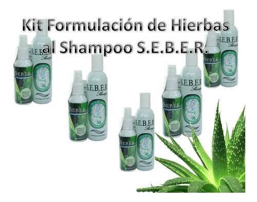 Seber Shampoo Y Revitalizador 5 Piezas