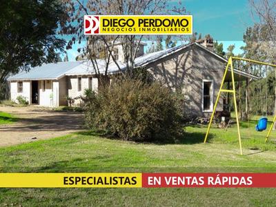 Chacra De 29 Has Y 5 Dormitorios En Venta, Montevideo.