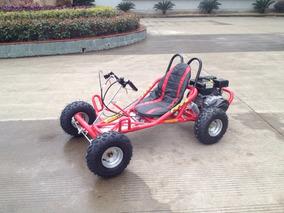 Go Kart Motor 196 Cc Autom Embrague Humedo Ar7 4t 2018 Fesal
