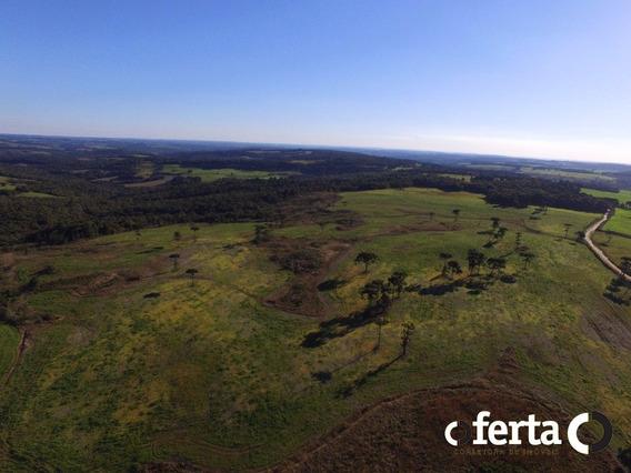 Fazenda - Centro - Ref: 47 - V-47