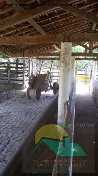 Fazenda Para Venda Em União Dos Palmares, Zona Rural - Fz-044_1-1155590