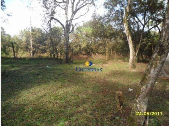 Terrenos Para Venda Em Colombo No Bairro São Gabriel - Te0021