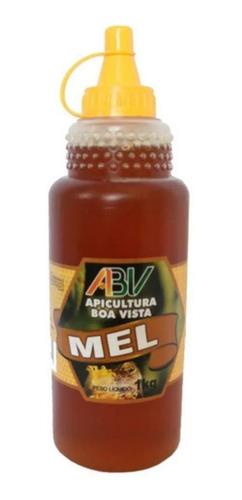 Mel Silvestre 1kg - Apicultura Boa Vista