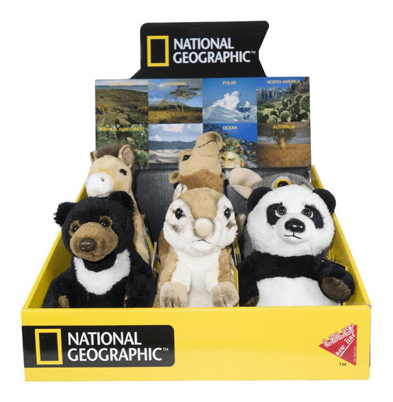 Pelúcia Asia - National Geographic - Black Bear (1pç) - 77