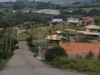 Terreno - Te0001 - 2366052