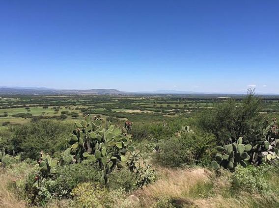 Rancho Vista Del Bajio