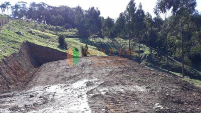 Chácara De 5000m² Estrada Geral Santa Lúzia - Imb971 - Imb971