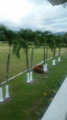Fincas En Arriendo Las Acacias 736-132
