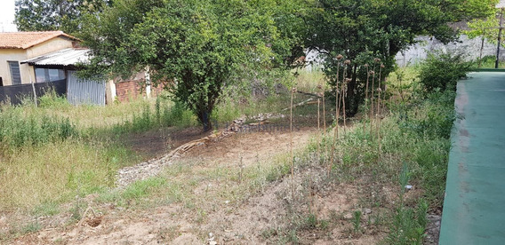 Terreno Para Aluguel Em Vila Marieta - Te013860