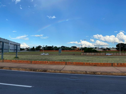 Terreno À Venda, 8000 M² Por R$ 17.600.000,00 - Jardim Moysés Miguel Haddad - São José Do Rio Preto/sp - Te5169