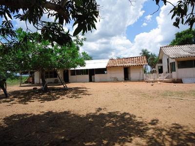 Venta 5000 Has Zona De Ipías, Santa Cruz, Bolivia