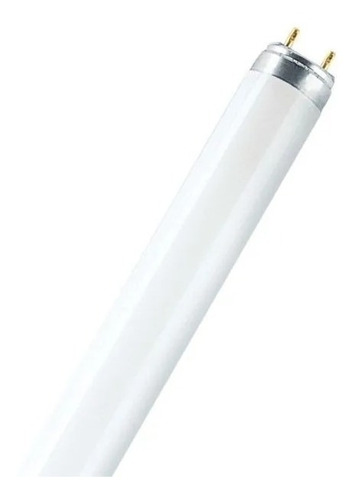 Bombillo Led Tubular 22w 6500k 120cm T-8