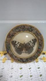 Quadro Borboleta E Pedras Naturais/ Souvenir Brasil/ 12 Cms