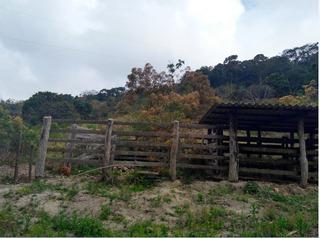 Sítio Com 4 Quartos Para Comprar No Zona Rural Em Barão De Cocais/mg - Ci4425