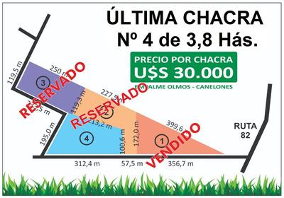 Venta De Chacra De 3,8 Hectáreas - Solamente U$s 30.000
