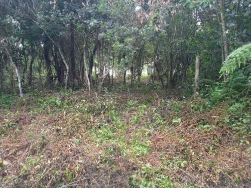 Imagem 1 de 5 de Terreno No Bairro Jardim Marambá, Em Itanhaém, Litoral 7391