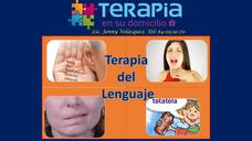 Terapia Del Lenguaje, Habla Y Voz.