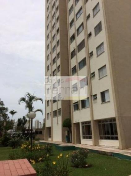 Apartamento Vl Maria 2 Dormitórios -ótima Oportunidade - Cf21113