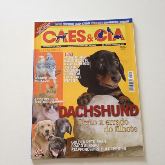 Revista Cães E Cia Dachshund Certo X Errado Do Filhote D550