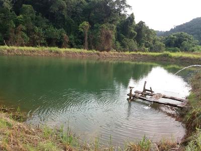 Sitio Miracatu/lago/piscina/sede/lazer/morar/ref;04809
