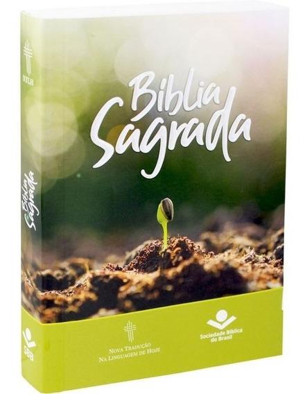 Bíblia Barata Evangelizar 20 Unidades 16,5 Cm Nova Linguagem