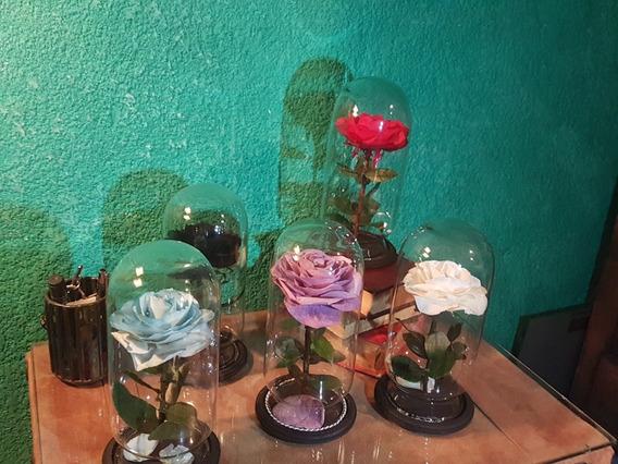 Rosa Eterna Rehidratada Capelo De Cristal Arreglos Florales