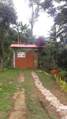 Finca En Venta. Produccion De Cafe A 3.5 Km. De La Panameri.