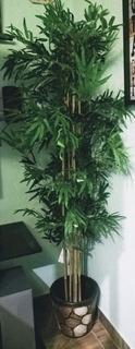 Árbol Bambu Artificial 1.80 Metros Decoracion Hogar Oficina