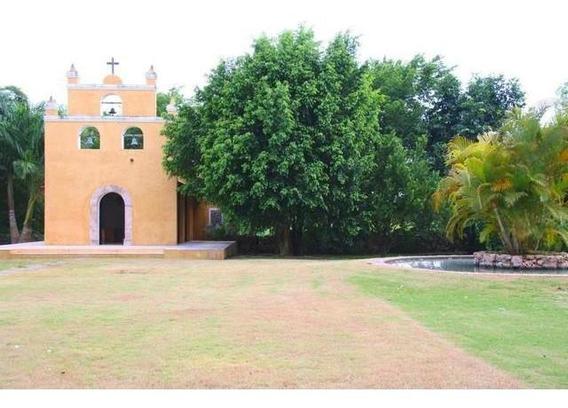 Hacienda En Mérida De 80 Hectáreas En Venta A 20 Min De Mérida