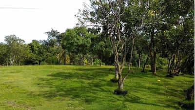 70 Tareas De Tierra Cerca Del Merca Santo Domingo Km22