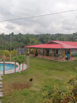Vendo Finca 2.5 Cuadras Filandia - Quimbaya